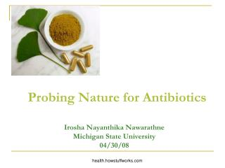 Probing Nature for Antibiotics