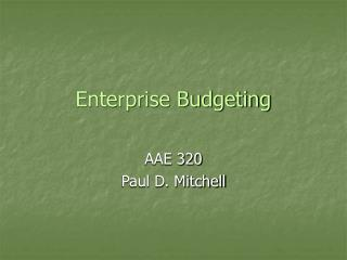 Enterprise Budgeting