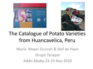 The Catalogue of Potato Varieties from Huancavelica, Peru