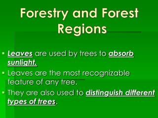 Forestry and Forest Regions Leaves  are used by trees to  absorb sunlight.