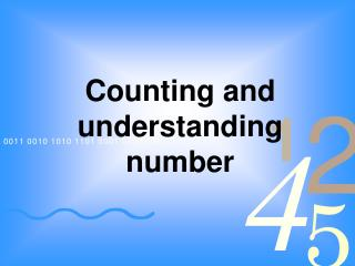 Counting and understanding number