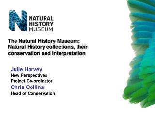 The Natural History Museum:  Natural History collections, their conservation and interpretation