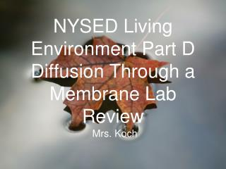 NYSED Living Environment Part D  Diffusion Through a Membrane Lab Review