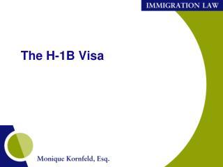 The H-1B Visa