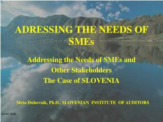 ADRESSING THE NEEDS OF SMEs