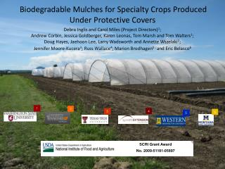 Biodegradable Mulches for Specialty Crops Produced  Under Protective Covers