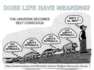 DOES LIFE HAVE MEANING?