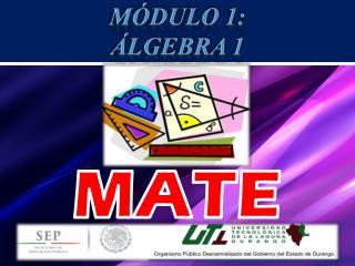 MÓDULO 1:  Álgebra 1