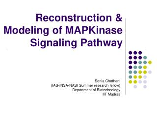 Reconstruction & Modeling of MAPKinase Signaling Pathway