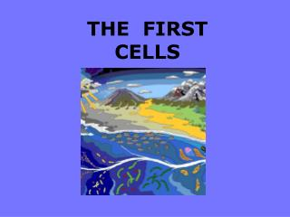 THE  FIRST  CELLS
