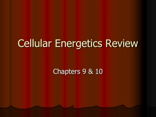 Cellular Energetics Review