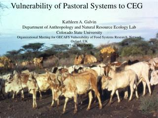 Vulnerability of Pastoral Systems to CEG