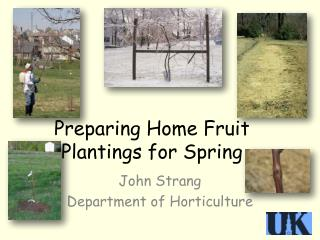 Preparing Home  Fruit Plantings for Spring