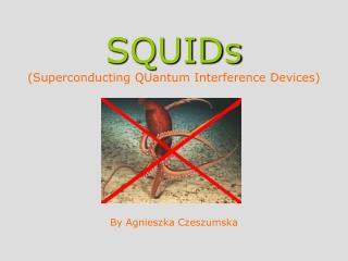 SQUIDs (Superconducting QUantum Interference Devices)
