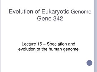 Evolution of Eukaryotic  Genome Gene 342