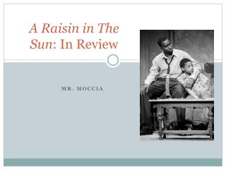 A Raisin in The Sun : In Review