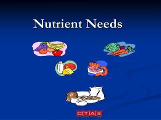 Nutrient Needs