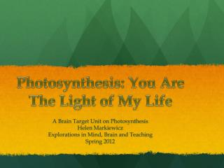 Photosynthesis: You Are The  L ight of My Life