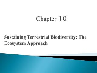 Sustaining Terrestrial Biodiversity : The Ecosystem Approach