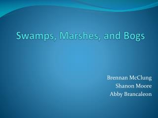 Swamps, Marshes, and Bogs