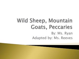 Wild Sheep, Mountain Goats, Peccaries