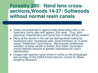 Forestry 280:  Hand lens cross-sections,Woods 14-27: Softwoods without normal resin canals