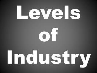 Levels of Industry