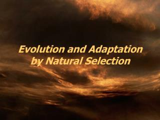 Evolution and Adaptation by Natural Selection