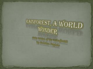 Rainforest, A World wonder