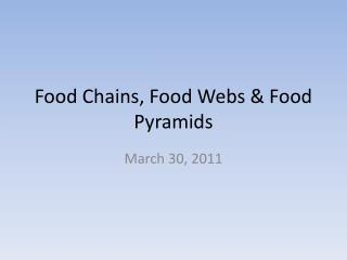 Food Chains, Food Webs & Food Pyramids