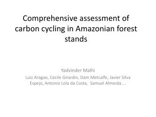 Comprehensive assessment of carbon cycling in Amazonian forest stands