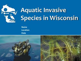 Aquatic Invasive  Species in Wisconsin