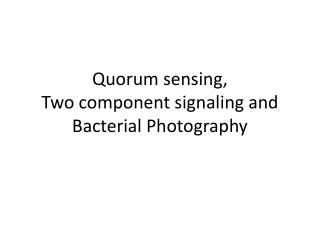 Quorum sensing,  Two component signaling and Bacterial Photography