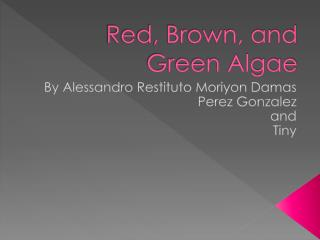 Red, Brown, and Green Algae
