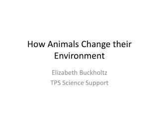 How Animals Change their Environment