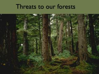 Threats to our forests