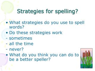Strategies for spelling?