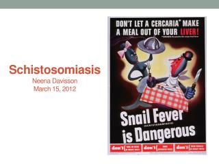 Schistosomiasis Neena  Davisson March 15, 2012