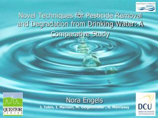 Novel Techniques for Pesticide Removal and Degradation from Drinking Water: A Comparative Study