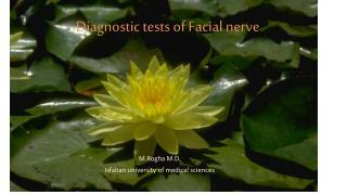 Diagnostic tests of Facial nerve