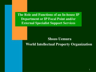 The Role and Functions of an In-house IP Department or IP Focal Point and/or External Specialist Support Services