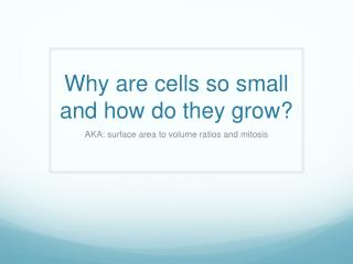 Why are cells so small and how do they grow?