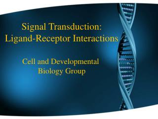 Signal Transduction: Ligand-Receptor Interactions Cell and Developmental  Biology Group