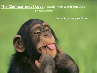 The Chimpanzees I Love :   Saving Their World and Ours By  Jane  Goodall