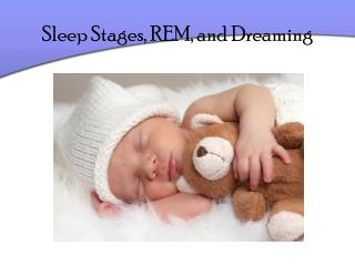 Sleep Stages, REM, and Dreaming