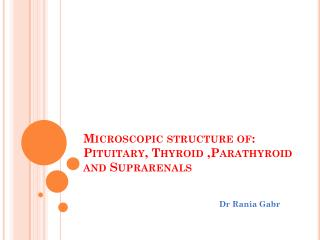Microscopic structure of: Pituitary, Thyroid ,Parathyroid and  Suprarenals