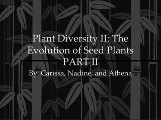Plant Diversity II: The Evolution of Seed Plants PART II