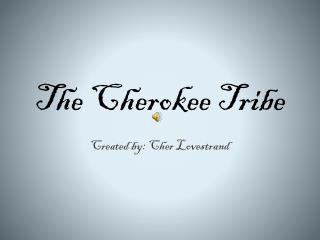 The Cherokee Tribe