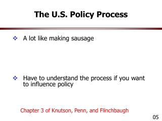 The U.S. Policy Process