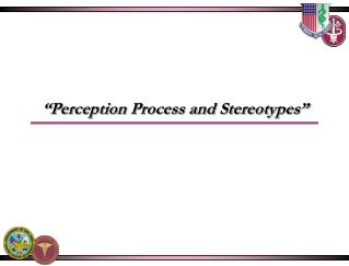 """Perception Process and Stereotypes"""